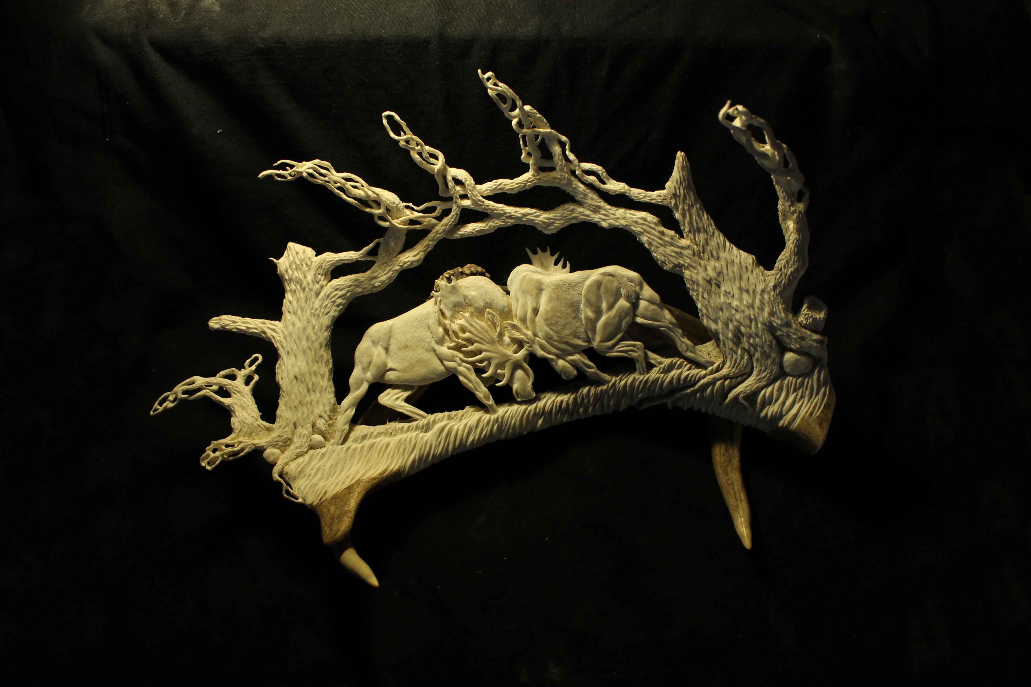 Moose Fight Antler Sculpture